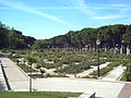 Rosaleda del Parque del Oeste (Madrid) 05.jpg