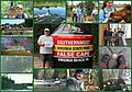 Ruffner collage guest memories 80 Virginia State Parks (24595554202).jpg