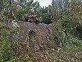 Ruine Steenoven Hengforden SBB.jpg