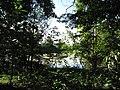 Rybník poblíž Putimi (001).jpg