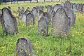 Ryglice cmentarz zydowski 9.jpg