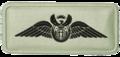 SANDF Qualification Pilots Wings 0-500 hrs badge embossed.png