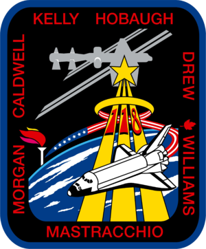 Tracy Caldwell Dyson - Image: STS 118 patch new