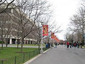 Stony Brook University - Main alley across the Stony Brook Campus