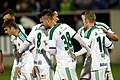 SV Mattersburg vs. SK Rapid Wien 2015-11-21 (047).jpg