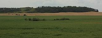 Saddle Hills County - Image: Saddle Hills County southern landscape
