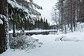 Saija 2014-196-0 (16040328791).jpg