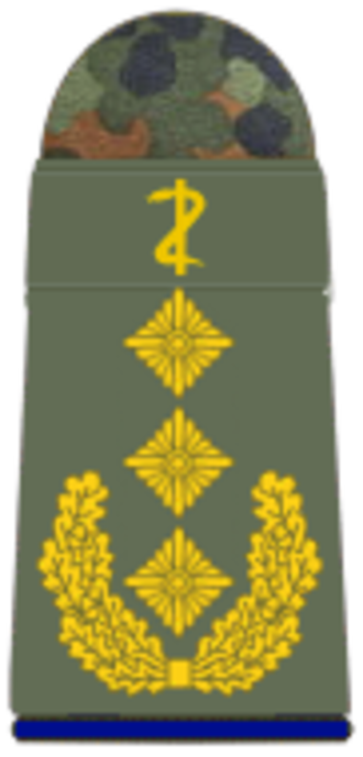 Rank insignia of the German Bundeswehr - Image: San H 331 Generaloberstabsarzt (Zahnmedizin)
