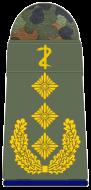 SanH 331-Generaloberstabsarzt-(Zahnmedizin)