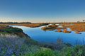 San Elijo Lagoon.jpg