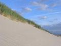 Sanddüne bei Hvide Sande P8232326.JPG