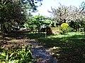 Scenery around Balgue - Ometepe Island - Nicaragua - 02 (30941002493).jpg