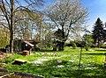 Schulgarten im Frühling.jpg