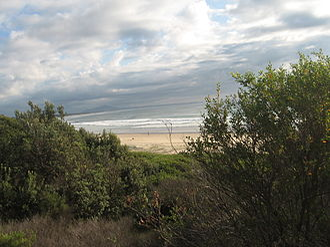 Scotts Head, New South Wales - Image: Scotts Head Beach