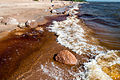 Seabord of Gulf of Finland Primorskoye shosse, 414, Repino, gorod Sankt-Peterburg, Russia.jpg