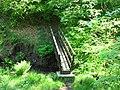 Secluded foot bridge - geograph.org.uk - 1329697.jpg