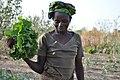 Senegalese women gardeners 6.jpg