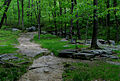 Seven Hills Trail.jpg