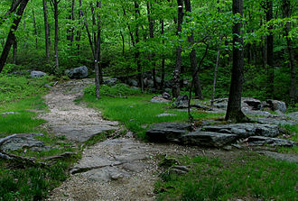 New York–New Jersey Trail Conference - Seven Hills Trail, Harriman State Park, New York