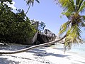 Seychelles plage granit.jpg