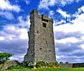 Shanmuckinish Castle, County Clare.jpg