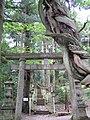 Shirakawa-no-seki Jinja Sando.jpg