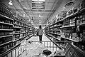 Shopping 53573227.jpg