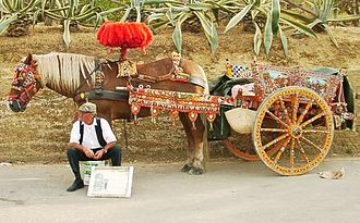 Sicilian cart - A Traditional Sicilian Cart from Agrigento, Sicily, 2003.  Note that the cart appears slightly raised where it is attached to the horse.  This is because the cart was traditionally drawn by donkeys, which are of a slightly lower stature to that of a horse (compare with the top photo from 1890 which features a donkey)