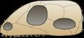 Skull synapsida.png