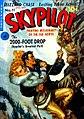 SkyPilot11.jpg