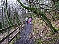 Sloughan Glen - geograph.org.uk - 1176743.jpg