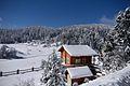 Snow Landscape 27-1-2017-1.jpg