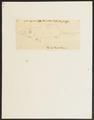 Sorex capensis - 1700-1880 - Print - Iconographia Zoologica - Special Collections University of Amsterdam - UBA01 IZ20900113.tif