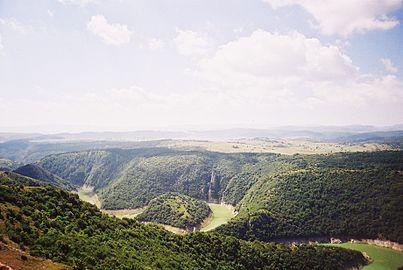 Specijalni Rezervat Prirode Uvac.jpg