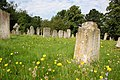 St.Mary's churchyard - geograph.org.uk - 533700.jpg