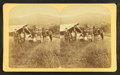 Stanley Family, Owl's Head Slide, Jefferson, N.H, from Robert N. Dennis collection of stereoscopic views.png