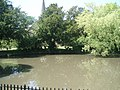 Stanmer Pond - geograph.org.uk - 1329901.jpg