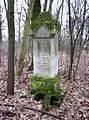 Stary cmentarz Wiązownica Mała 2013 04.JPG
