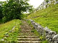 Steps on the left of Malham Cove - geograph.org.uk - 1368160.jpg