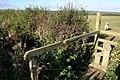 Stile and footbridge - geograph.org.uk - 460725.jpg