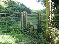 Stile on Castleton Circular Walk - geograph.org.uk - 1480537.jpg