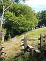 Stile on Dartmoor Forest Footpath 11 - geograph.org.uk - 211499.jpg