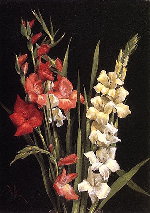 Edward Chalmers Leavitt - Still Life with Gladiolas, circa 1890