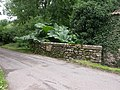Stockland, County Bridge - geograph.org.uk - 1087689.jpg