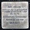 Stolperstein Kurfürstenstr 58 (Tierg) Georg Blumenfeld.jpg