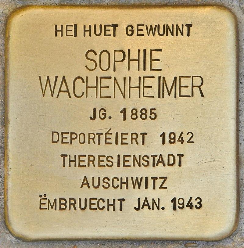 Stolperstein für Sophie Wachenheimer (Esch-sur-Alzette).jpg