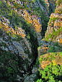 Storms River gorge in South Africa.jpg