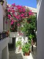 Street in Chora of Naxos, 13M087.jpg