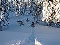 Swedish Arctic Rangers (1).jpg