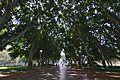 Sydney NSW 2000, Australia - panoramio (261).jpg
